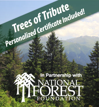 Trees-Of-Tribute
