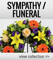 Sympathy Flowers for Home or Office