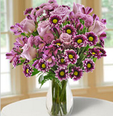 Blooms Today exclusive gift box collection of next day flowers