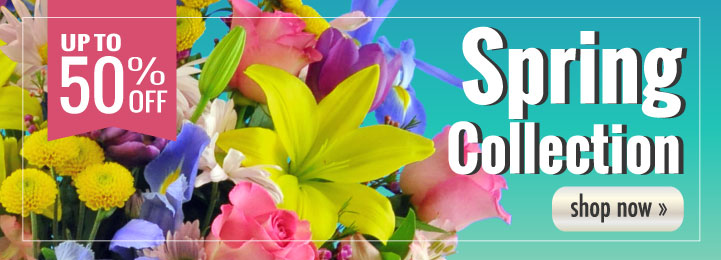 Celebrate Spring with Blooms Today!