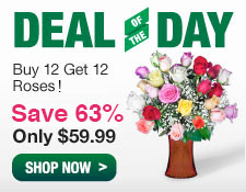 Deal of the day. Buy a dozen get another dozen roses free